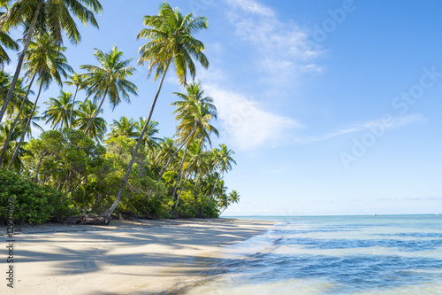 Spoed Foto op Canvas Caraïben Bright scenic view of an empty, palm-fringed tropical beach on the Costa dos Coqueiros Coconut Coast in northeast Nordeste Bahia, Brazil