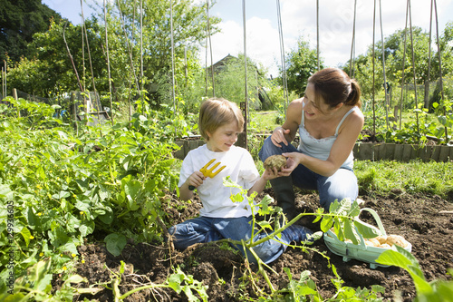 Photo Mother and son gardening together in an allotment