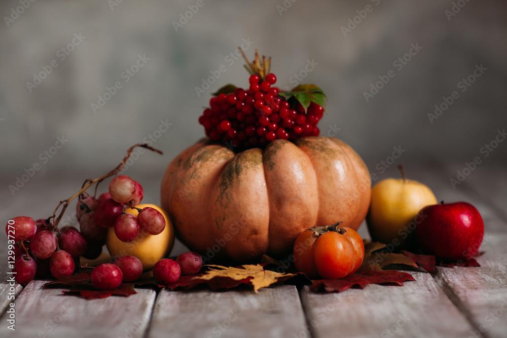 Photo  autumn Still Life