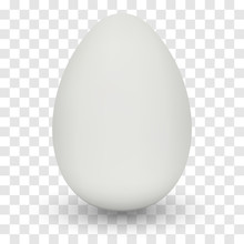 Chicken Egg With Shadow On Tra...