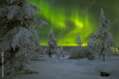Foto auf Gartenposter Nordlicht Northern Lights - Aurora borealis over snow-covered forest. Beautiful picture of massive multicoloured green vibrant Aurora Borealis, Aurora Polaris, also know as Northern Lights in the night sky.