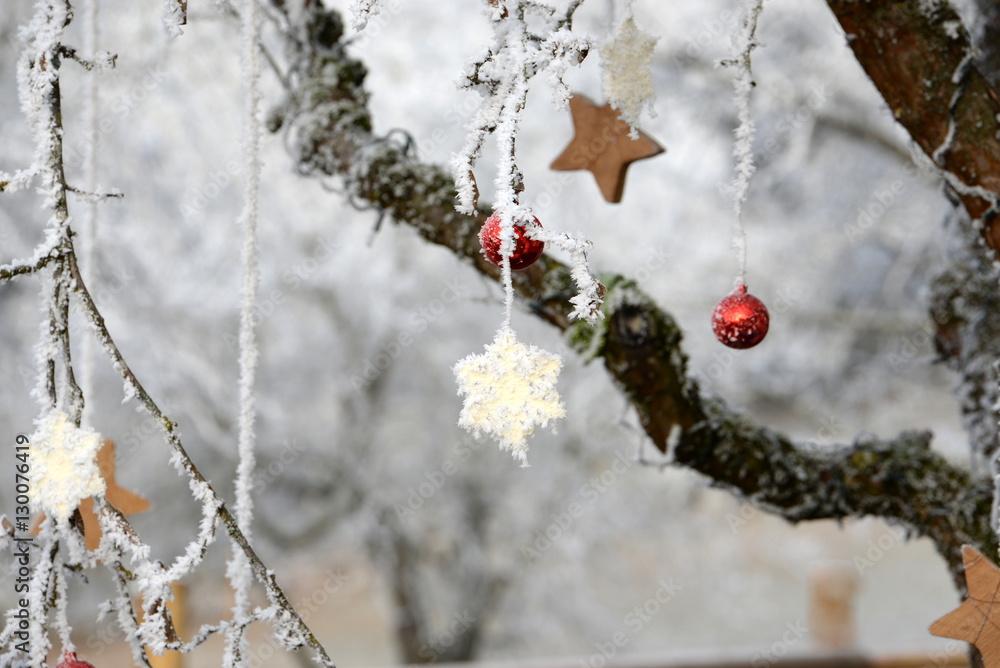 Christbaumkugeln Sterne.Fotografie Obraz Weihnachtsdekoration Am Apfelbaum