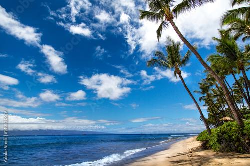 Fotografie, Obraz  Palmen am Strand von Maui, Hawaii mit Wolkenhimmeln, Ozean, Meer, Strand