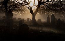 Halloween Graveyard A Spooky Church Graveyard On A Misty Winter Morning