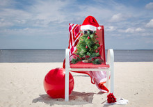 Horizontal Image Of A Green Little Decorated Christmas Tree Wearing Santa Hat And Sunglasses Sitting In A Red Lawn Chair On A Sandy Beach With The Ocean Behind It On A Sunny Summer Day.