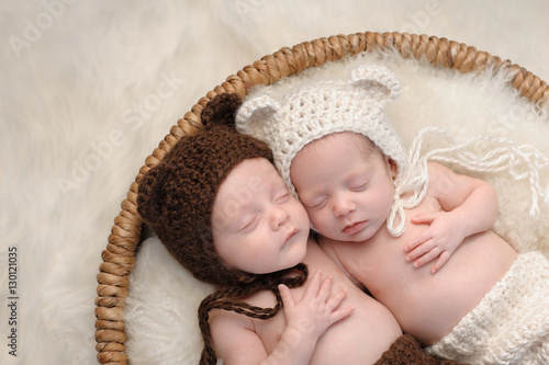Fraternal Twin Baby Brother and Sister in Bear Hats Canvas Print
