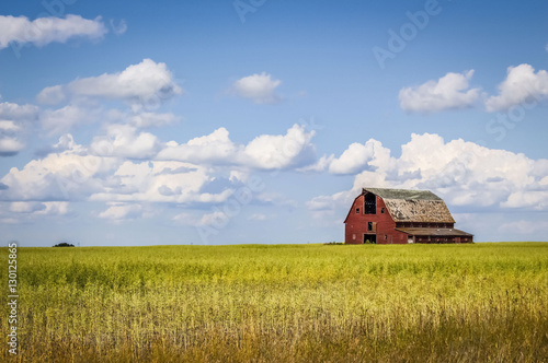 Photographie old abandoned red barn sitting in a field of green grass under a blue sky filled