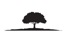 Green Tree And Roots. Vector I...