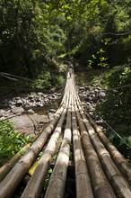 Bamboo Bridge At Dark View Falls, St. Vincent And The Grenadines, Windward Islands