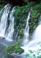 Fototapeta Wodospad Waterfall