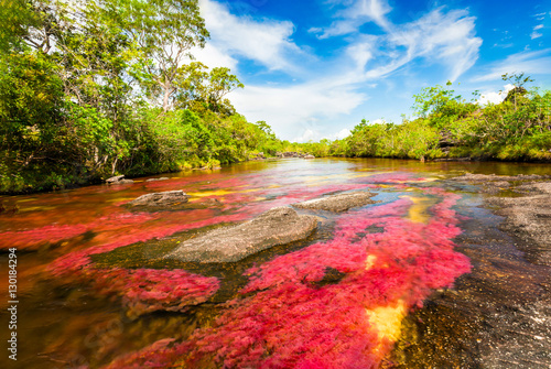 Montage in der Fensternische Fluss River landscape in Colombia, Cano Cristales
