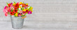 Leinwandbild Motiv Blumenstrauß - Tulpen in einem Zinkeimer