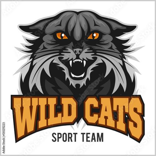 Poster Croquis dessinés à la main des animaux Wildcat mascot - sport team.
