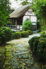 A Small Thatched Building In A Garden.