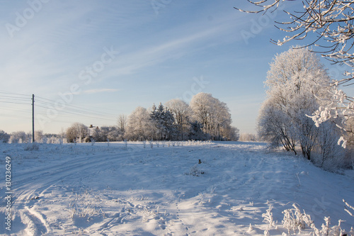 Keuken foto achterwand Bossen A beautiful winter landscape in nordic Europe