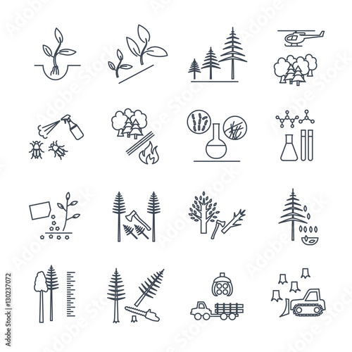 Photo set of thin line icons forestry and silviculture production proc