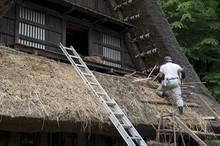 Village Residence Roof Thatching At Nihon Minkaen (Open-air Folk House Museum) In Kawasaki, Japan