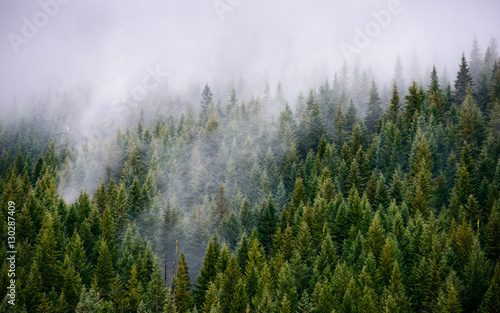 Fotografía  Mount Hood