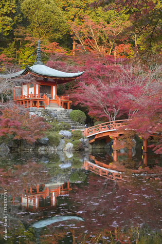 Fotobehang Tuin Japanese temple garden in autumn, Daigoji Temple, Kyoto, Japan, Asia
