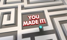 You Made It Maze Lost Found Success 3d Illustration