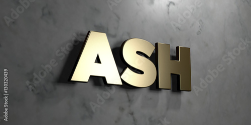 Fotografie, Obraz  Ash - Gold sign mounted on glossy marble wall  - 3D rendered royalty free stock illustration