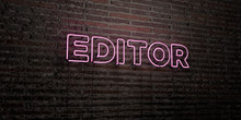 EDITOR -Realistic Neon Sign On Brick Wall Background - 3D Rendered Royalty Free Stock Image. Can Be Used For Online Banner Ads And Direct Mailers..