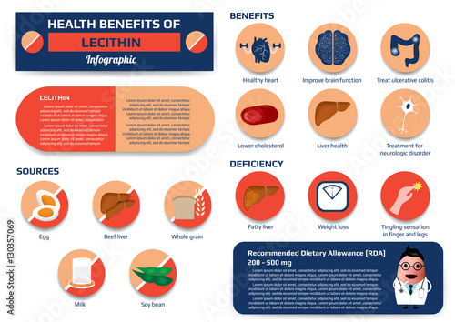 Valokuva  Health benefits of lecithin infographic including of sources, benefits and deficiency, supplement medical vector illustration for education