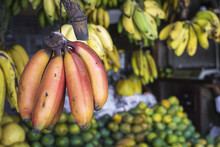 Red, Yellow And Green Bananas Hanging For Sale At A Market, Kand