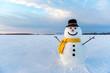 Leinwandbild Motiv snowman