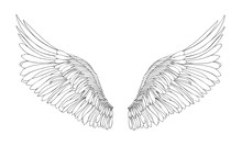 Wings. Vector Illustration On ...