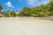 Flamingo beach at Aruba island