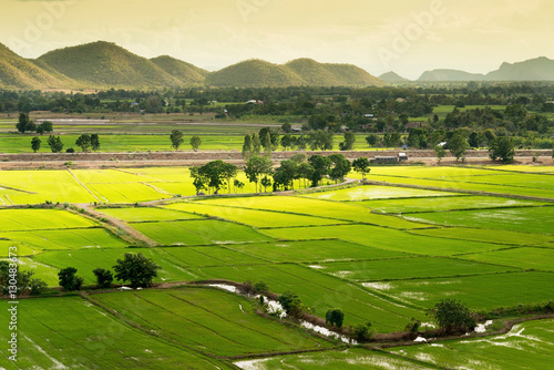 Terrace rice fields in Kanjanaburi, Thailand..