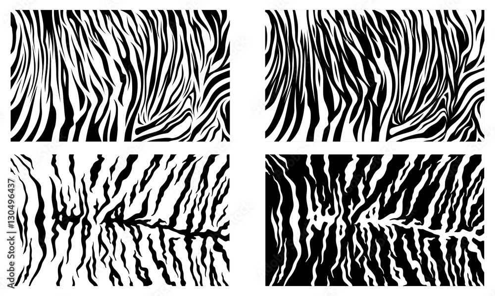 Fototapeta Black Tiger Stripes Vector Pattern Background Stock Collection