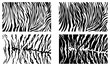 Black Tiger Stripes Vector Pattern Background Stock Collection