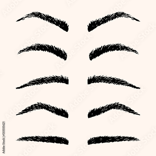 Types Of Brow Vector Illustration Template Hand Drawing Eyebrow