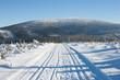 Droga przez Żmijowiec z widokiem na Śnieżnik, Kotlina Kłodzka