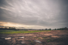 Landscape With Wheel Tracks On...