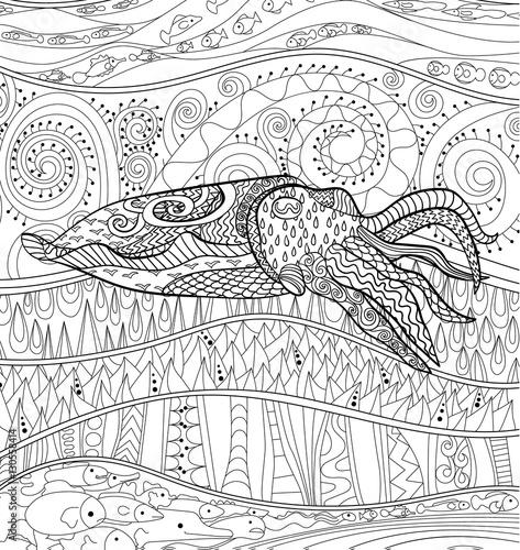 Carta da parati Cuttlefish with high details.