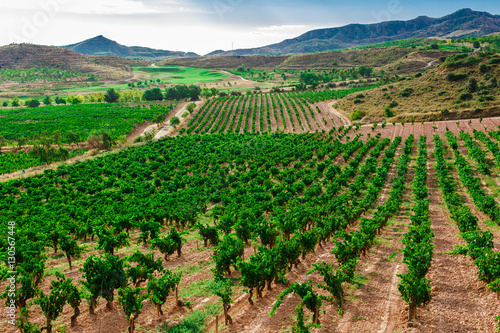 Foto op Plexiglas Groene Picturesque landscape of Spain
