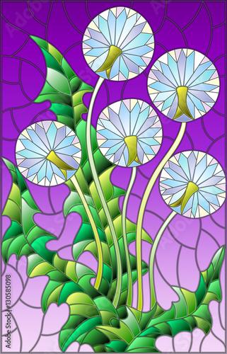 ilustracja-w-witrazu-stylu-kwiacie-blowball-na-purpurowym-tle