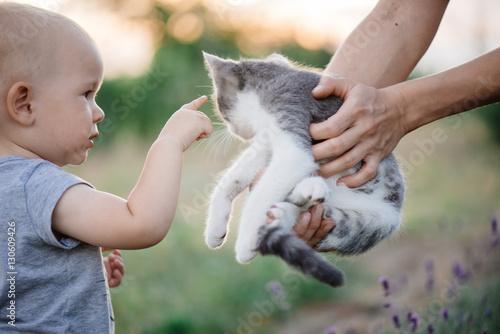 Fotografie, Obraz  portrait of a little girl with a cat