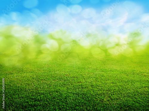 Garden Poster Spring green grass background
