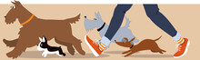 Horizontal Banner With Dogs And Dog Walker's Legs, EPS 8 Vector Illustration