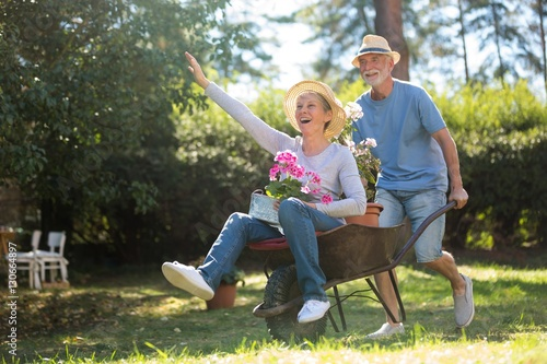 Fotografía  Senior couple playing with a wheelbarrow