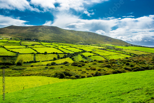 Spoed Foto op Canvas Nieuw Zeeland Landschaft mit Weiden in Irland