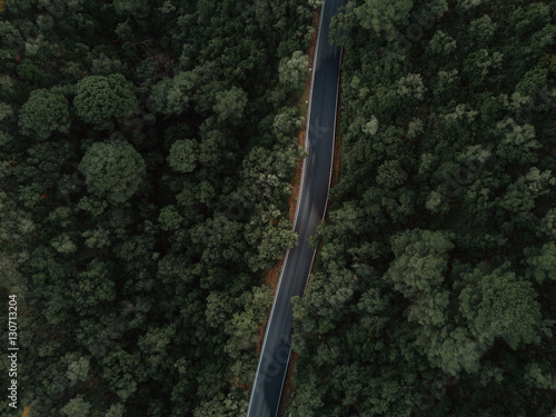 Poster Luchtfoto Aerial view of a road crossing a forest