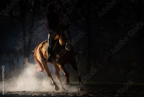 Fototapeta Young girl riding a horse obraz