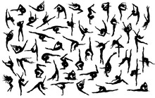 Big Vector Set Of 50 Gymnast's...