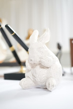 Cute Rabbit Miniature At The W...