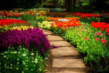 Stone Path Winding In Spring Flower Garden With Blossoming Flowers, Retro Toned